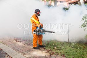 Worker fogging residential area with insecticides to kill aedes mosquito - ThamKC Royalty-Free Photos