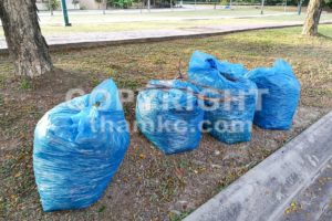 Bags of garden refuse packed for recycle into compost - ThamKC Royalty-Free Photos