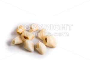 Collection of extracted milk teeth - ThamKC Royalty-Free Photos