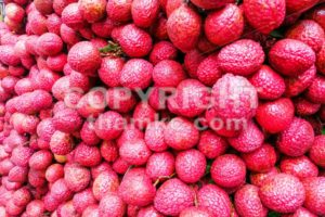 Close-up on heap group of lychee fruits tied together - ThamKC Royalty-Free Photos