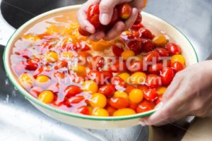 Hand washing cherry tomato with running water in household sink - ThamKC Royalty-Free Photos