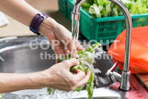 Hand washing leafy vegetable with running water in household sink - ThamKC Royalty-Free Photos