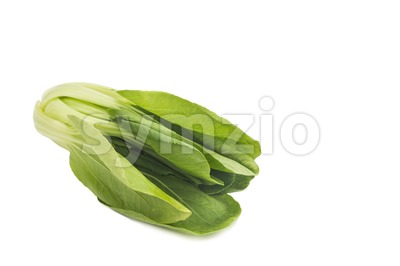 Fresh green leafy bok choy vegetable isolated in white. Stock Photo