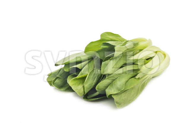 Fresh green leafy bok choy vegetable isolated in white