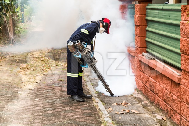 Worker fogging drain at residential area with insecticides to kill aedes mosquito, carrier of dengue virus. Stock Photo