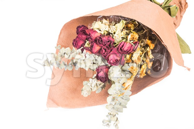Bouquet of beautiful wrapped dried red roses and flowers. Stock Photo