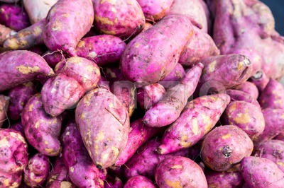 Heaps of freshly harvested purple skin sweet potatoes roots Stock Photo