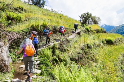 A group of people hiking through a scenic terrace plantation in Nepal Stock Photo