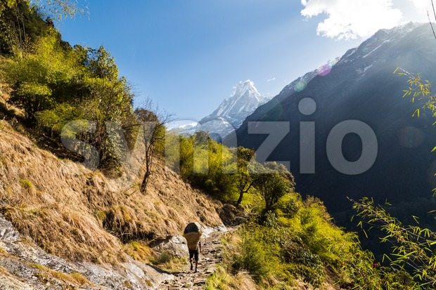 A porter with loads walking a scenic trail towards Mount Machapuchare, Nepal Stock Photo