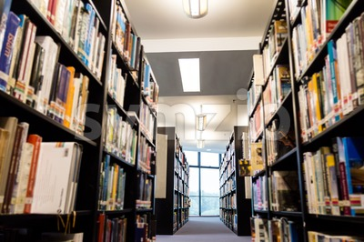 Library book shelf aisles with focus on the far end bright window with greenery Stock Photo