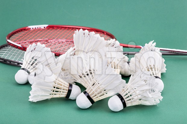 Group of used and worned out badminton shuttlecock and rackets on green mat PVC court