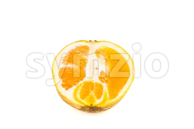 Tropical highland orange grown in Cameron Highlands, Malaysia Stock Photo