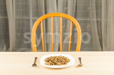 Concept of Dog Kibbles on plate with fork and spoon on dining table Stock Photo