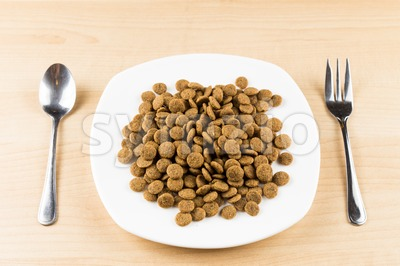 Concept of Dog Kibbles on plate with fork and spoon on table Stock Photo