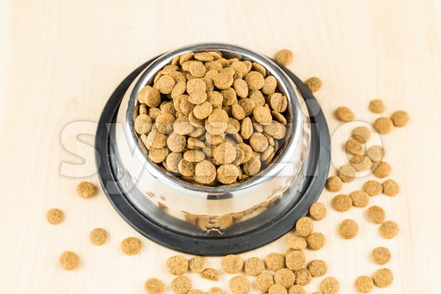 Dog Kibbles in a bowl with spill overs on wooden floor