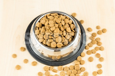 Dog Kibbles in a bowl with spill overs on wooden floor Stock Photo