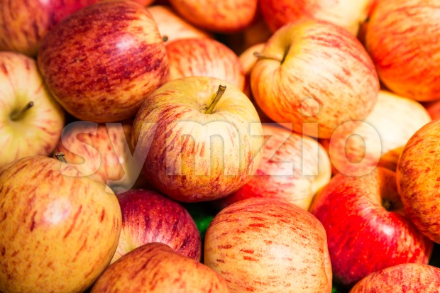 A pile of red juicy apple with selective focus on one piece at foreground Stock Photo