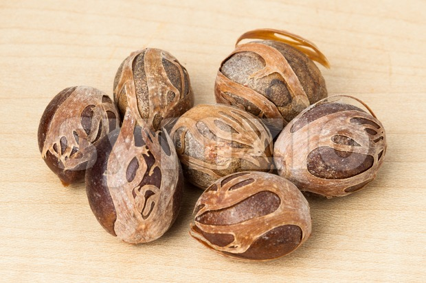 Closeup image of the aromatic dried nutmeg Stock Photo