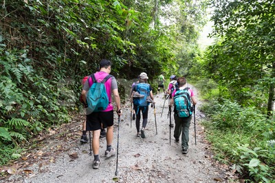 Group of people hiking in a tropical forest Stock Photo