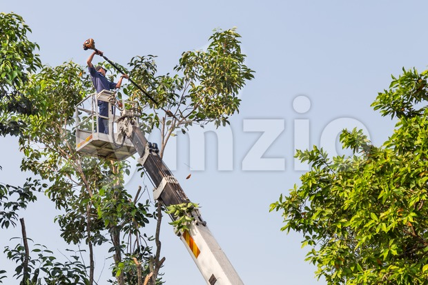 Worker on crane cutting tree branches with a chain saw Stock Photo