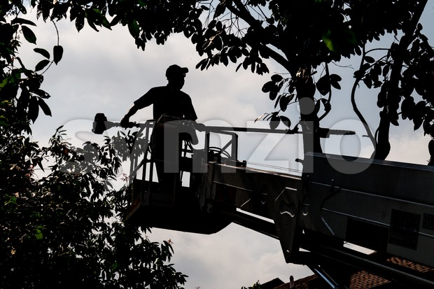 Silhouette shot of worker on crane cutting tree branches with a chain saw Stock Photo