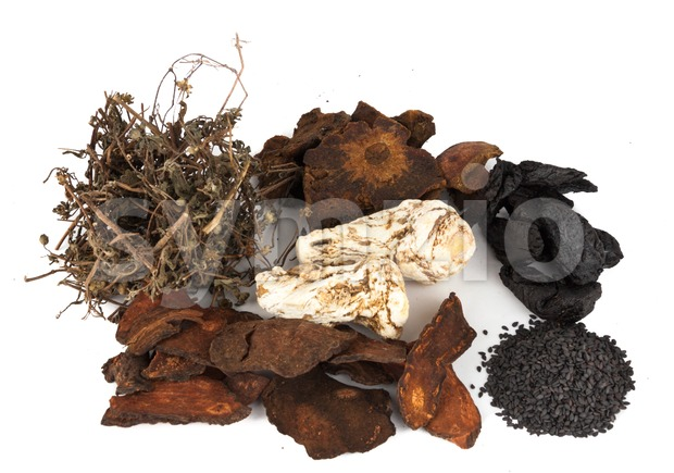 A group of Chinese dried herbs beneficial for hair growth Stock Photo