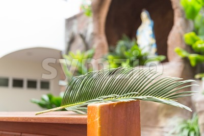 Closeup of palm leaf on pews with de-focused grotto Stock Photo