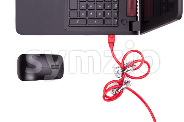 Concept of computer network security with double padlocks over cable Stock Photo