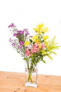 Stagnant water within flower vase potential breeding place for mosquito Stock Photo