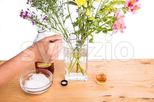 Add apple cider vinegar and sugar to keep flowers fresher Stock Photo
