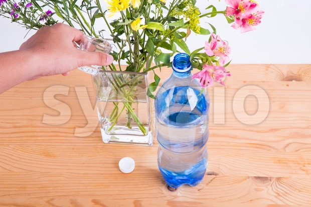 Add some soda into vase to keep cut flowers fresher Stock Photo