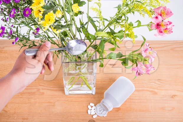 Add grounded acetylsalicylic acid tablet into vase keep flowers fresher Stock Photo