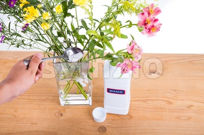 Add bleach powder into vase with water to keep flowers fresher Stock Photo