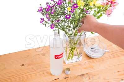 Add vodka and sugar into vase to keep flowers fresher Stock Photo