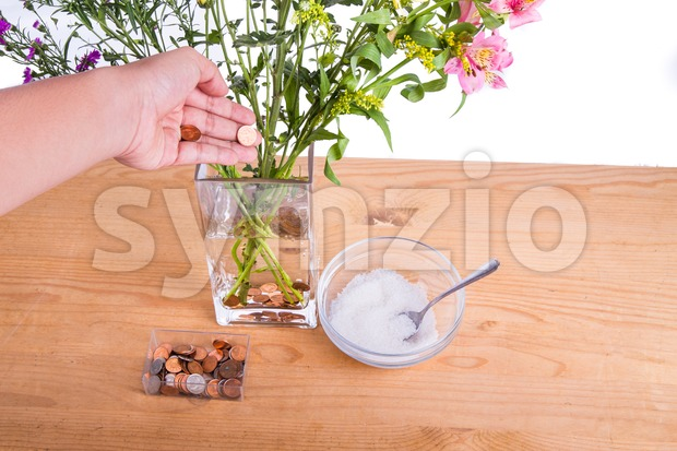 Add copper coins and sugar into vase keep flowers fresher Stock Photo