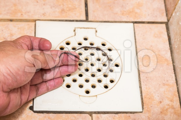 Hand inspecting bunch of hair trapped at bathroom drain outlet Stock Photo