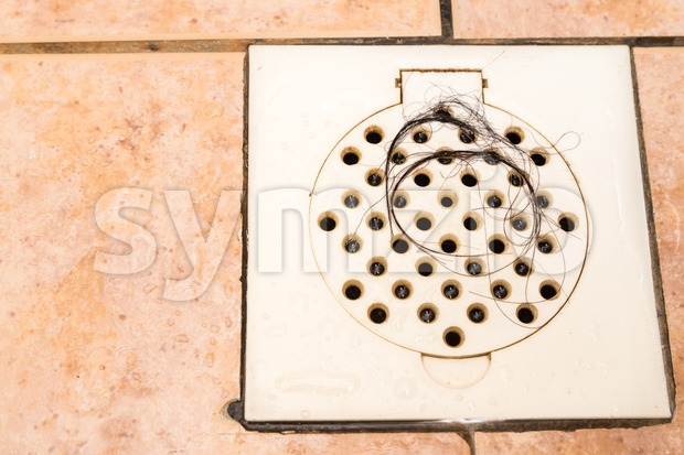 Bunch of hair trapped at bathroom shower drain outlet Stock Photo