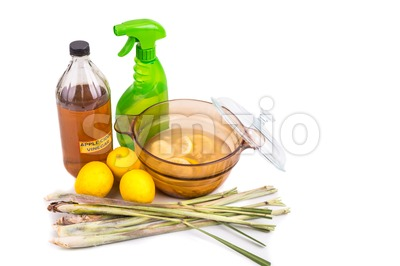 Apple cider vinegar, lemon,  lemongrass effective insect repellent home formula Stock Photo