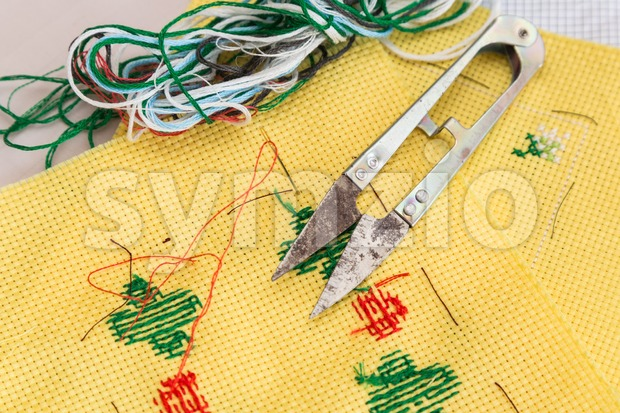 Embroidery cross stitch kit of fabric, needle, thread, scissor and chart