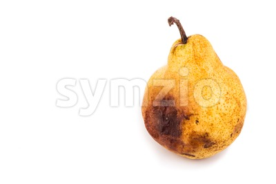 Rotten and decomposing pear on white background Stock Photo