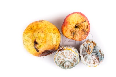Rotten, moldy and decomposing lemon, apple, pear on white background Stock Photo