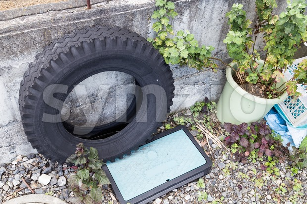 Used tires traps rain water risk breeding ground for mosquito Stock Photo