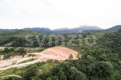 Tropical jungle clearing for development Stock Photo