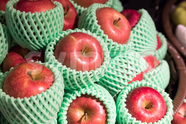 Heap of organic juicy apple with protective foam mesh Stock Photo
