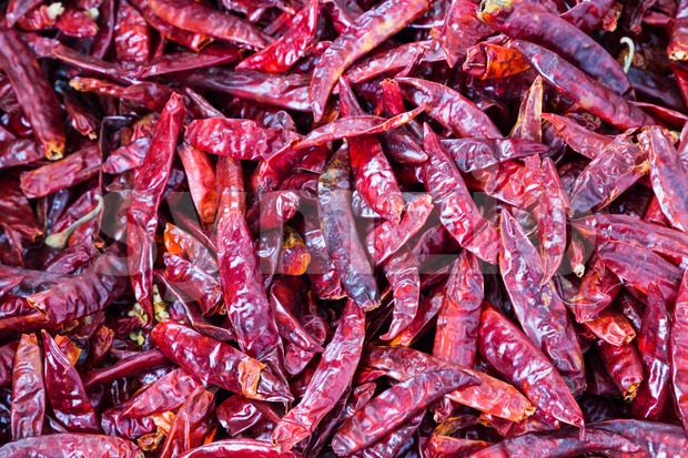 Heaps of freshly dried spicy chilli pepper Stock Photo