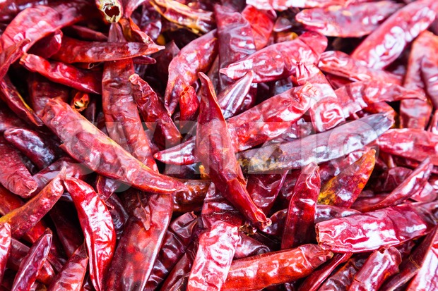Closeup on heaps of freshly dried spicy chilli pepper Stock Photo