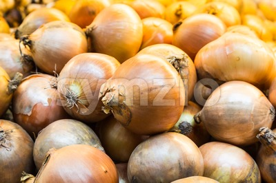 Heaps of fresh yellow onion bulb Stock Photo
