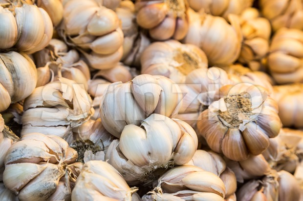 Close up on heap of whole white garlic Stock Photo
