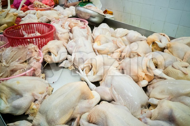 Vendor selling freshly slaughtered whole chicken in market stall in Asia