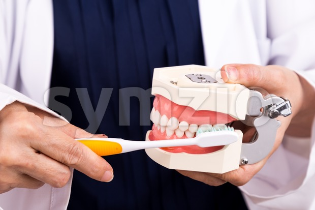 Series of dentist showing correct method of brushing teeth Stock Photo